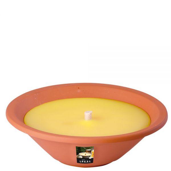 Duftkerze Citronella 6 h